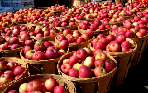 Apple season is finally here!
