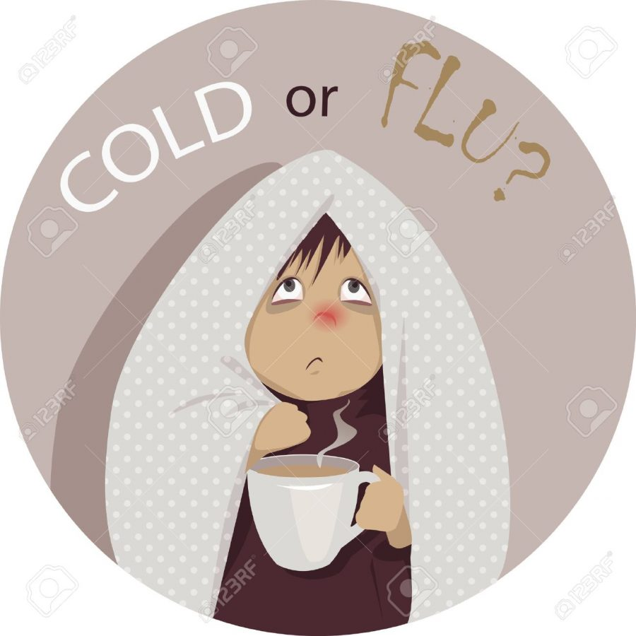 Sheas Health Corner: Is it just a cold, or the FLU??