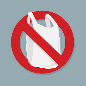Plastic Bags: To Ban or not to Ban?