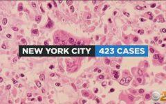 Shea's Health Corner - Measles Outbreak